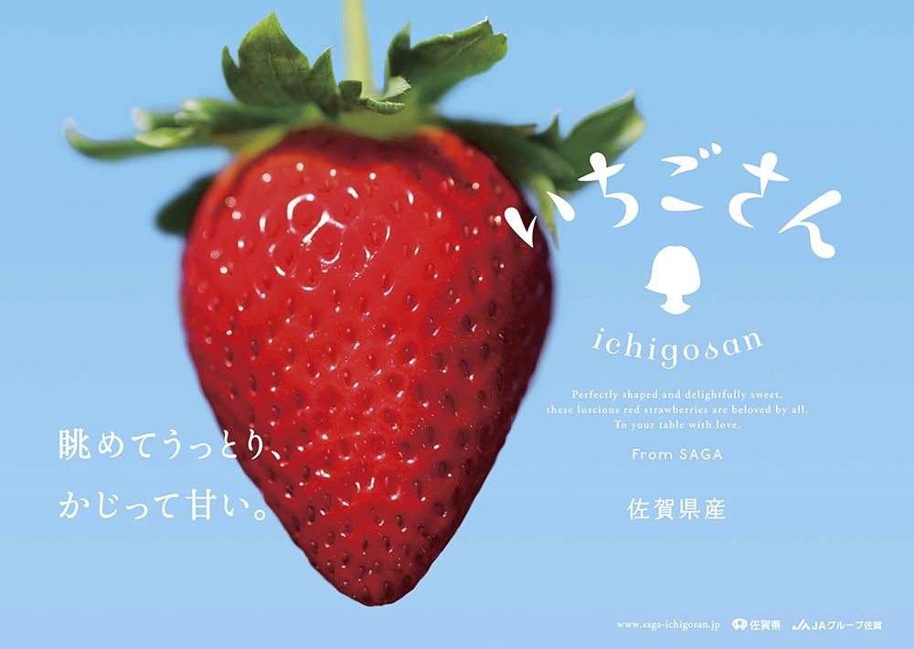 11728_ichigosan_00